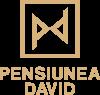 Pensiunea David logo